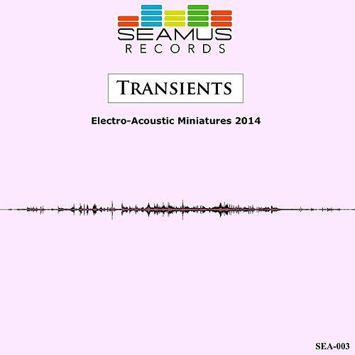 SEAMUS Electro-Acoustic Miniatures 2014